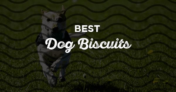 best dog biscuits