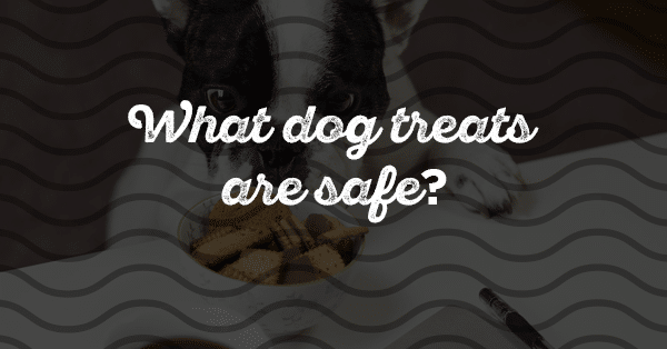 what dog treats are safe