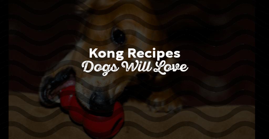 Kong Recipes Dogs Loves