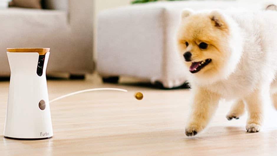 Best Treats Furbo Dog Camera